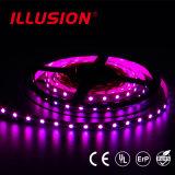 SMD2835 60LEDs/M IP54 IP65 IP67 impermeabilizzano l'indicatore luminoso di striscia del LED