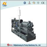 Motor Diesel Bomba de agua multietapa horizontal