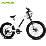 1000W大きい力の脂肪質のタイヤの電気バイクか雪Ebike