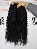 自然で黒いカラーバージンの毛の拡張の9Aペルーのねじれた巻き毛、100%の人間の毛髪