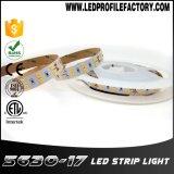 5630 600 SMD RGB LED 지구, 5050 어드레스로 불러낼 수 있는 RGB LED 지구, 3m LED 지구 테이프 빛