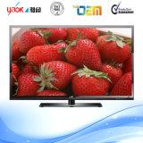 39インチD-LED TV、任意選択DVB-T/C、ATSCの流行の金デザイン、USB機能演劇のビデオ、HDMI、VGA