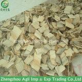 Raspadora de madeira portátil do Pto da filial de árvore da floresta feita em China