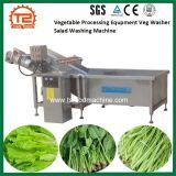 Équipement de transformation de légumes Légumes Salade de la rondelle de machine à laver