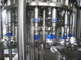 Terminar la pequeña máquina de rellenar mineral pura del agua de botella