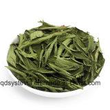 Extrait organique de Stevia pour l'édulcorant normal