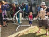Meno turbina di vento verticale di 25dB Maglev 400W per uso domestico