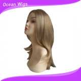 組合せカラーより長い様式の総合的な毛のかつらの直毛のかつら