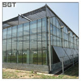 4mm 5mm Super White/Ultra Clear Tempered Glass für Greenhouse