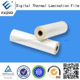 Lucido preincollare la pellicola termica di BOPP (35mic)