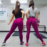 L'yoga delle ghette di Scrunch del bottino di forma fisica di Sportwear ansima le ghette