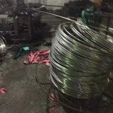 Tubo de la bobina del acero inoxidable 304
