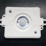 110 Lumen 1W LED SMD impermeables