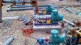 Facebook gruppiert industrielle thermische Öl-Pumpe