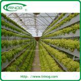 Hidroponia Growing Channels (NFT) à venda