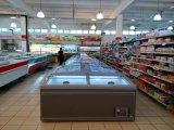 Hipermercado Isla congelador los alimentos congelados para mostrar