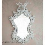 Decoratieve Spiegel voor het Kleden zich van het Meubilair de Zaal van het Bad