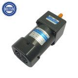 AC 60 Watt orientado el motor eléctrico con caja de cambios de alto par