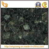 Azulejo de piso del granito del verde de la mariposa de China