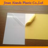 Page intérieure de l'album en PVC adhésif feuilles intérieure en PVC