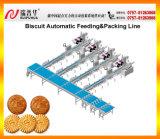 Biskuit-automatische Verpackmaschine-Zeile