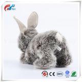 Nouveau design personnalisé de haute qualité Soft Hare Jouet Jouet de lapin en peluche