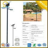40W LED Lamp mit 6m Round Galvanized Pole Factory