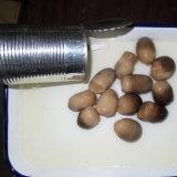 Fungo di paglia inscatolato alimento sano intero