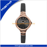 Plus grande face à Lady Bracelet Watch Quartz montre-bracelet en acier inoxydable