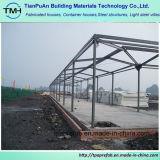 Изготовление стальной структуры Foshan профессиональное