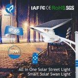 lampe extérieure solaire d'éclairage LED de rue de l'intense luminosité 30W