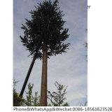 Torrette artificiali di telecomunicazione dell'albero del camuffamento del pino di Monopoles