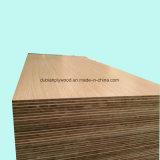 Certifié de peuplier Blockboard de base pour le mobilier