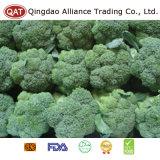 Bróculos inteiros frescos da qualidade superior