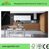 De Deur van de Keukenkast van het Project van de Bouw van de leverancier