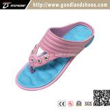 L'azzurro casuale di colore rosa di cadute di vibrazione delle donne comode di estate calza 20244-3