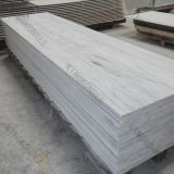 Comitato di parete di superficie solido dell'acquazzone del reticolo del marmo del materiale da costruzione