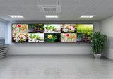 Dd55p10 DIY対話型LEDのビデオ壁