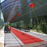 Rede 100% agricultural da máscara de Sun do verde do HDPE de Vrgin