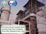 De Schil van het graan, Steel en Stro, Biomassa die Thermische Elektrische centrale in brand steken