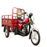 1.3*2m 큰 화물을%s 가진 성인에 의하여 사용되는 납품 수송 Trike