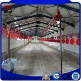 Alloggiamento prefabbricato del pollame della struttura d'acciaio con la strumentazione dell'azienda agricola di pollo