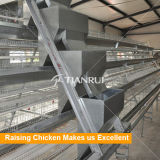 poule/poulet de couche/oeuf soulevant la cage complètement automatique et semi-automatique