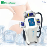 Cer-anerkannte fette Frost Coolsculpting Cryolipolyse Schönheits-Maschine