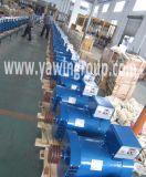 Alternatore della st di monofase di fabbricazione in serie con il collegare di rame puro di 100% e la puleggia facoltativa