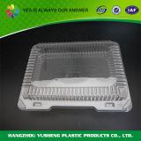 Contenitore di alimento di plastica leggero a gettare