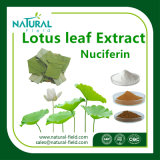 Extrait de fines herbes de lame de lotus d'extrait de santé