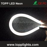 Colore impermeabile di 230V 120V 24V che cambia l'indicatore luminoso al neon della corda del LED