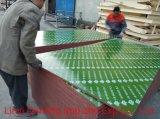 Pelo menos 30 vezes a cor verde filme plástico que enfrentou o contraplacado/Placa revestido de plástico/PP diante do filme de PVC/Compensado de madeira contraplacada de construção para a construção