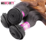 Ombreの人間の毛髪ボディ波の加工されていないRemyのインドに毛の編むこと